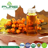Sea Buckthorn Berry seed Oil
