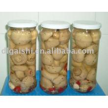 canned champignon mushroom/champignon/Cannned food mushrooms