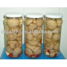 cogumelo enlatado champignon / champignon / Cannned food mushrooms