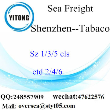 Pelabuhan Shenzhen LCL Consolidation To Tabaco