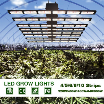 LED Grow Light 900W con perchas