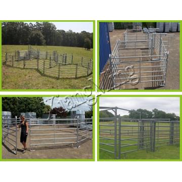 Panneau de bétail clôturant la clôture de panneau de cheval clôture de cheval de porte de cheval clôture de Corral