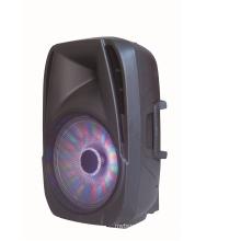 15inch Altavoz Bluetooth Troley con micrófono inalámbrico con precio de promoción