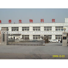 automatic expandable gate---installed 004