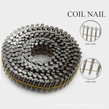 All Size Roofing Umbrella Nail From China