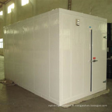 Chambre de congélateur de conteneur de haute qualité