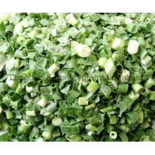 Scallion verde liofilizado; Scallion verde deshidratado; Fd Scallion