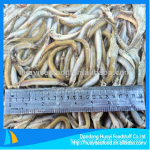 fresh frozen sand lance fish bottom price