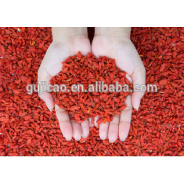 Venta caliente de bayas de goji secas de 280 granos por 50 gramos