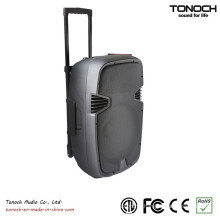 Factory Supply 10 Inches Plastic Trolley Active Speaker with Battery