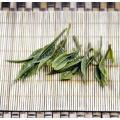high mountain green tea huizhou tunlv with good taste