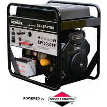 Popular Generator Price 13kw (EF13000)