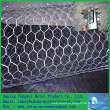 Fábrica de China Venda quente Um fio de aço hexagonal do sibilo / fio decorativo da galinha (china de alibaba)