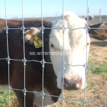 Cattle Fence-Hot Dipped Galvaniserad Kraal Network