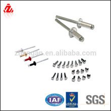 metal screw rivet