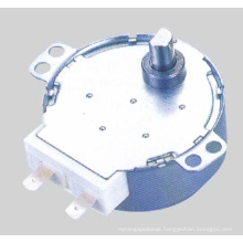 AC Synchronous Motor (49TDY-D)