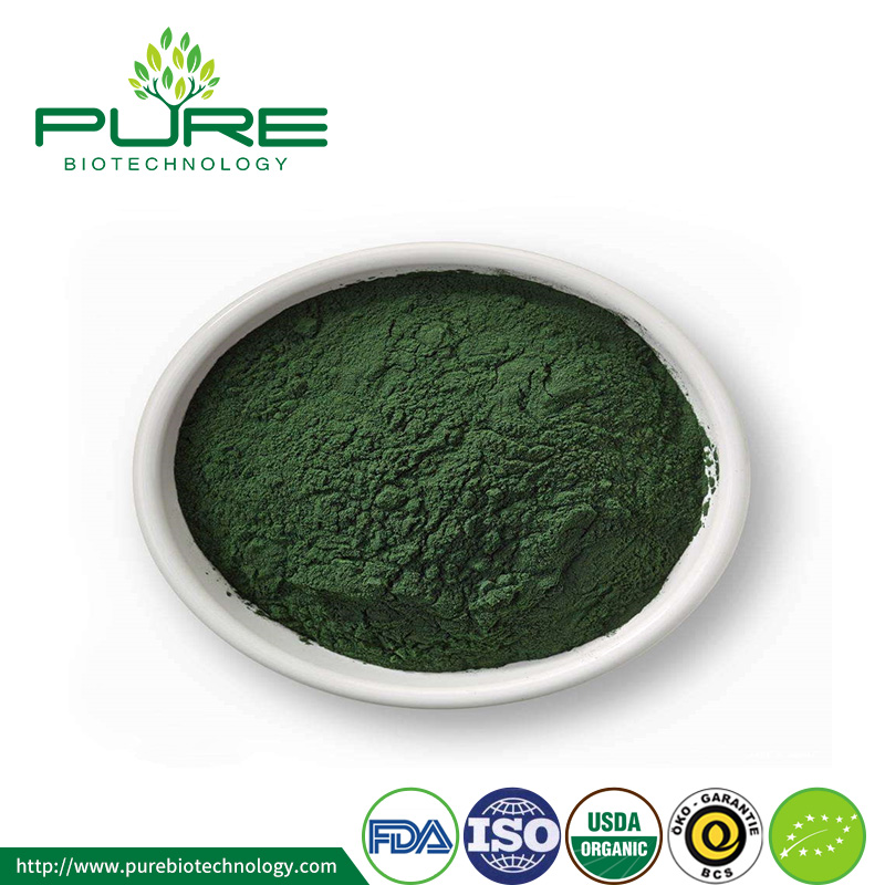 Organic Chlorella powder1