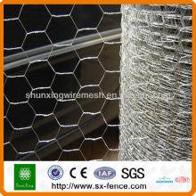 Galvanized & pvc coated Hexagonal Wire Mesh