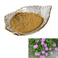 factory suppy high quality Pure plant extract Kanna Extract Mesembrine Sceletium tortuosum extract