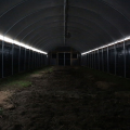Industrial Hemp Greenhouse Pipe Agricultural Single Span Tunnel Blackout Greenhouse Film