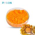 Extrait de curcuma Curcuminoïdes 10% HPLC (soluble dans l'eau)