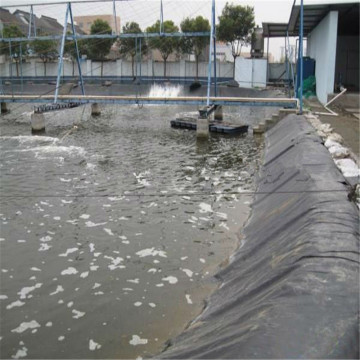 Aquaculture Fish Pond Liner HDPE Geomembrane Waterproof