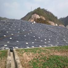 Plastic waterproof pvc ceiling board for roof garden
