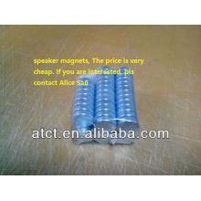 Speaker magnet/portable magnetic speakers/permanent magnet