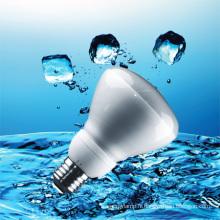 CE R80 ampoules à économie d'énergie (BNF R80)