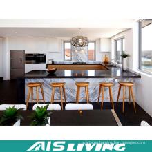 Laca profesional del fabricante con el gabinete de cocina de mármol (AIS-K395)