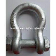 Us Type Drop Forged Hot DIP Galvanized Anchor Shackle for Lifting (G2130)