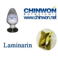 Skin Rejuvenation Kelp Extract Laminarin