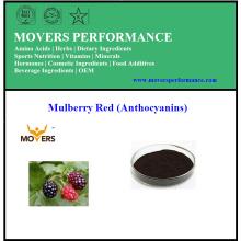 Fabrik-Versorgungsmaterial-Auszug Maulbeere-Extrakt