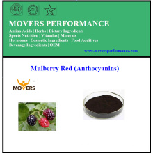 Factory Supply Plant Extract Mulberry Extract