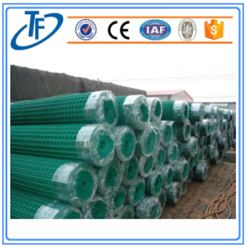 pvc coated holland wire cloth/galvanized euro fence