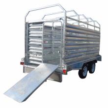 10 x 5 pieds ferme Trialer utilisé bétail Bétail transportant remorque avec double essieu