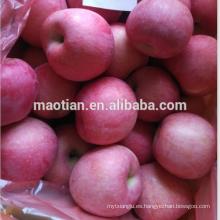 Nueva temporada Fresh Red Fuji Apple