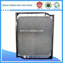 Venta caliente HOWO WG9729530231 para el mercado de Irán