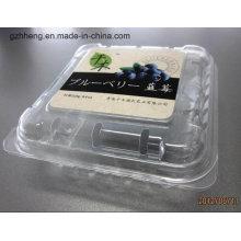 Caja plástica transparente del embalaje del ANIMAL DOMÉSTICO para la fruta / el vehículo (bandeja plástica)