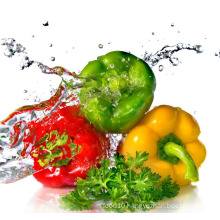 sweet pepper/colorful pepper