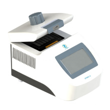 DNA polymerase in PCR machine for lab using test