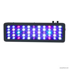 Freshwater LED Aquarium Lights for Home Tank