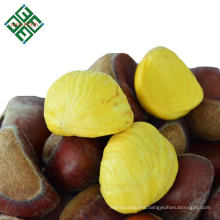 sweet fresh chestnuts with best price