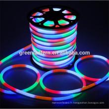 le néon mené imperméable à l'eau a mené le tube flexible chaud / froid blanc / R / G / B / RVB a mené la lumière de corde de néon