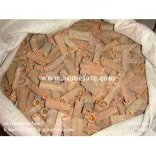 Cassia tube Cigar