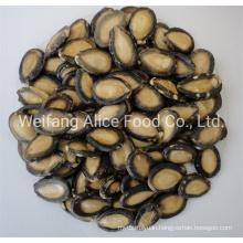 China Wholesale Halal Certificated Watermelon Seeds Bulk Quality Black Watermelon Seeds