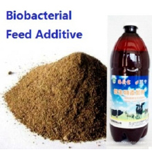 Seaweed Biobacterial organic Nutrients Used for Feed Additive