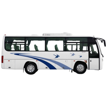 Dongfeng LHD / RHD Eléctrico Diesel Fue Bus