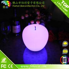 Christmas LED Decoration
