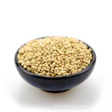 2015 nova colheita amarelo / branco vassoura milheto para venda